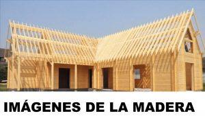 fotos de la madera