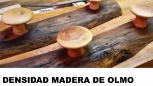 madera de olmo densidad