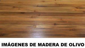 madera de olivo fotos
