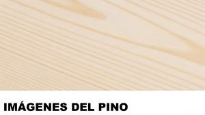 madera de pino fotos