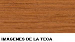 madera de teca fotos