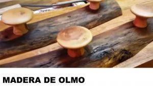 olmo madera